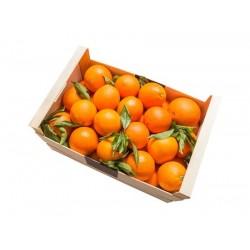 Oranges bio à jus  colis de 2kg