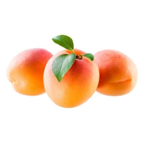 Abricots bio  du Roussillon (1 kg)